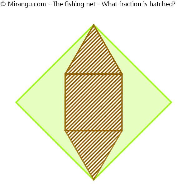 The fishing net