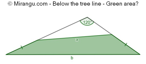 Below the tree line